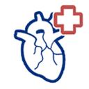 Профилактика флеботромбоза Причины и факторы риска Симптомы
