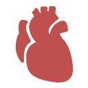 Профилактика сердечно-сосудистых заболеваний Стратегии и мероприятия
